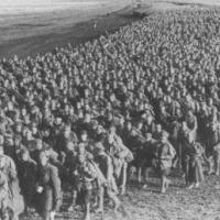 Сколько пленных советских военнослужащих погибло в фашистских концлагерях