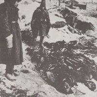 Как содержали советских военнопленных фашисты внутри Сталинградского котла